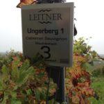 Ungerberg Tafel
